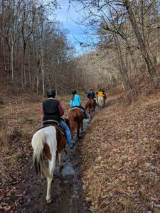 Horse Riding Trail